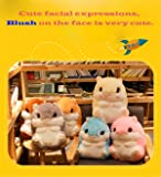 Alpacasso 3 In 1 Cute Hamster Plush Stuffed Animal