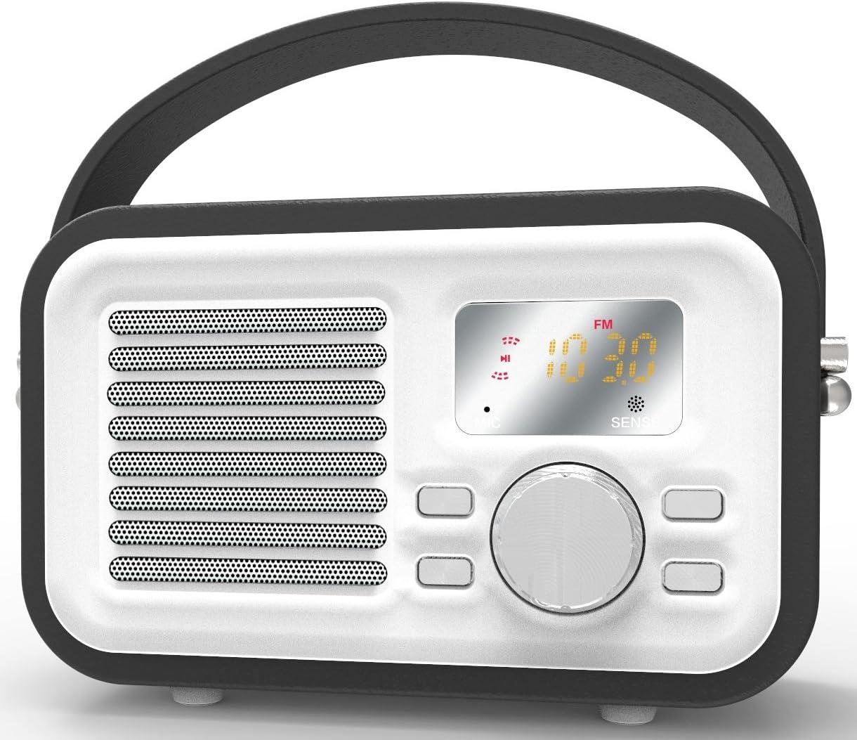 HotNCold Vintage Surround Sound Outdoor Wireless Boombox Speaker
