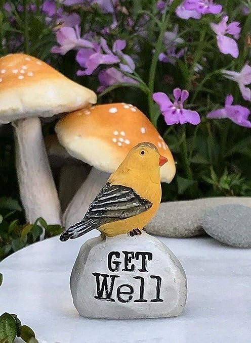 Amazon Com Adjore Miniature Fairy Garden Terrarium Accessories