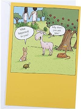 Amazon.com: dayspring bibletails Humor Tarjetas de ...