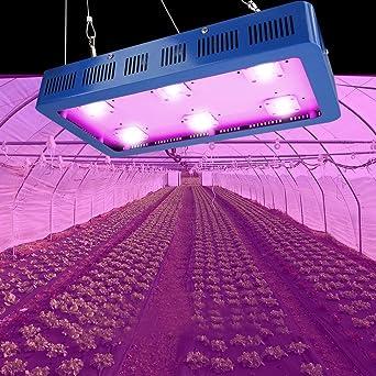 Floraison Spectre Serre 1200w1500w1800w Croissance Led Eclairage Pour Lampe Complet Horticole Dimmable Semis PlantesGermination Cob Ybf6g7y