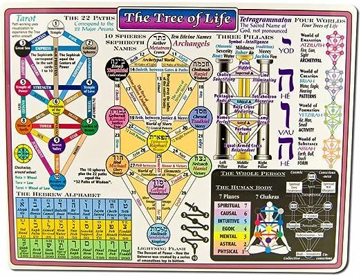 Amazon Com Reference Charts Kabala Tree Of Life Health Personal Care The sephirot tree of life. reference charts kabala tree of life