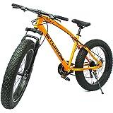STURDY BIKES Fat Mountain Bike with 26X4 Inch Tyres (Orange)