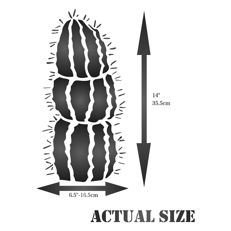 Amazon.com: Mexican Fence Post Cactus Stencil - (size 6.5\