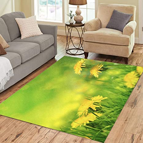 Semtomn Area Rug 5 X 7 Green Dandelion Beautiful Spring Flowers Blue May Landscape Summer Home Decor Collection Floor Rugs Carpet For Living Room Bedroom Dining Room Amazon Ca Home Kitchen