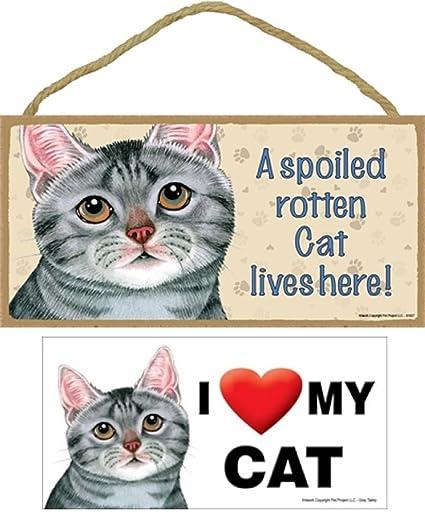 Gris Tabby gato conjunto de 2 artículos -- a Spoiled gato vive aquí placa &