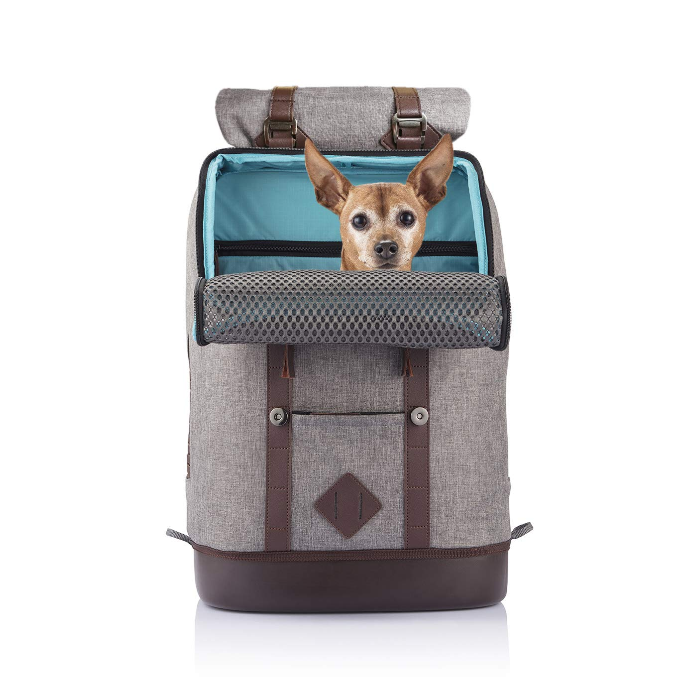 Kurgo Dog Carrier Backpack for Small Pets - Dogs & Cats | TSA Airline Approved | Cat | Hiking or Travel | Waterproof Bottom | G-Train | K9 Ruck Sack | Red | Grey (Heather Charcoal Grey) by Kurgo