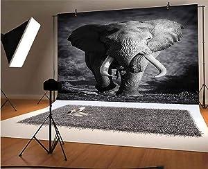 Elephant 20x10 FT Vinyl Photography Background Backdrops,Majestic Elephant Bull Approaching Photo Exotic Wild Habitat Mammal Art Print Safari Background for Graduation Prom Dance Decor Photo Booth Stu
