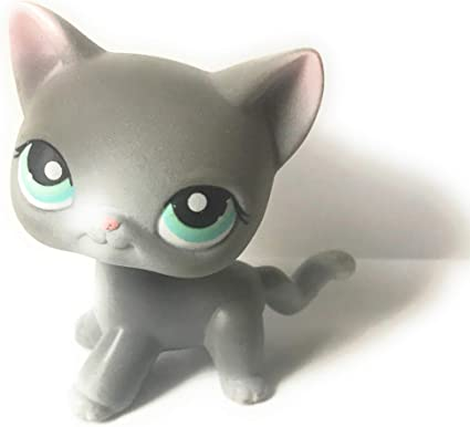Amazon Com Shorthair Kitten 126 Grey Blue Eyes Littlest Pet Shop Retired Collector Toy Lps Collectible Replacement Figure Loose Oop Out Of Package Print Musical Instruments