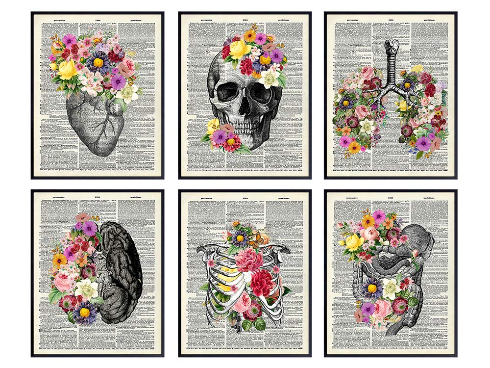 Medical Dictionary Art Set - 8x10 Vintage Anatomical Posters - Floral Wall Decor for Doctors Office, Clinic, Med Student Dorm - Shabby Chic Gift for Nurses, Physicians Assistant, PA - Unframed Photos