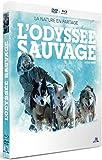 L'Odyssée sauvage [Combo Blu-ray + DVD]