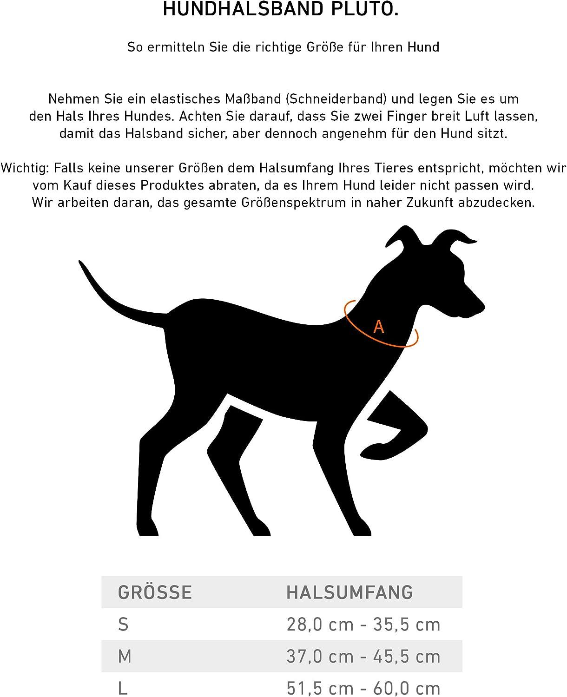 S Jack /& Russell Cani Collare de Cuoio Pluto Vera Pelle con Originale J/&R in Rilievo Collare per Cani Pluto