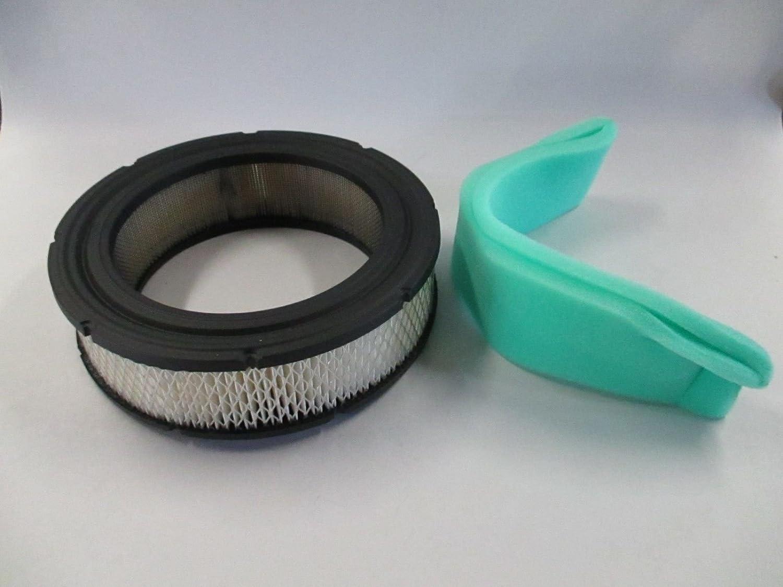 Genuine Briggs /& Stratton 692519 Air Filter /& 692520 Pre Filter Combo Set OEM