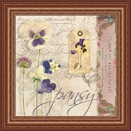 Amazon Pansy By Carol Robinson Vintage Pressed Flowers 15x15