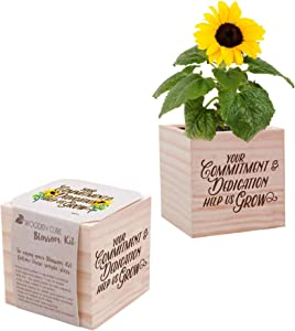 Desk Accessory for The Office - Sunflower Plant Seed Packet, Peat Pellet, and Natural Pine Wooden 3x3 inch Cube Planter - Employee Appreciation Gift -