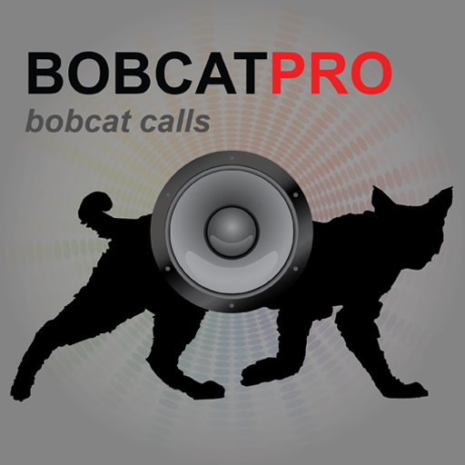 REAL Bobcat Calls App - For Bobcat Hunting & Predator Hunting - BLUETOOTH COMPATIBLE (Predator Gear)