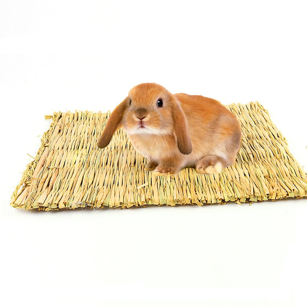 16 x 10.6 Inches Bwogue Natural Woven Grass Mat For Hamsters,Rabbits,Hedgehog,Guinea Pig,bunny bed and Other Small Animals (2 Pack)