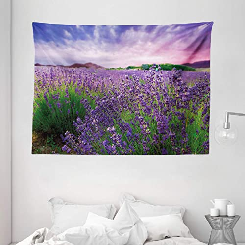 Ambesonne Lavender Tapestry, Serene Field View in Tihany Hungary Dramatic Dreamy Sunset Sky Nature, Wide Wall Hanging for Bedroom Living Room Dorm, 80 X 60 , Pink