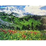 Mt. Rainier National Park, Washington 1000 Piece Puzzle by Guild Puzzle