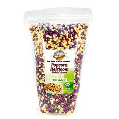 2 lb - Multi-colored - Raw Organic Heirloom Popcorn Kernels - Low Calorie High Fiber Snack Perfect For Movie Night - Made In The USA - All Natural, Vegan, Non GMO, Gluten Free