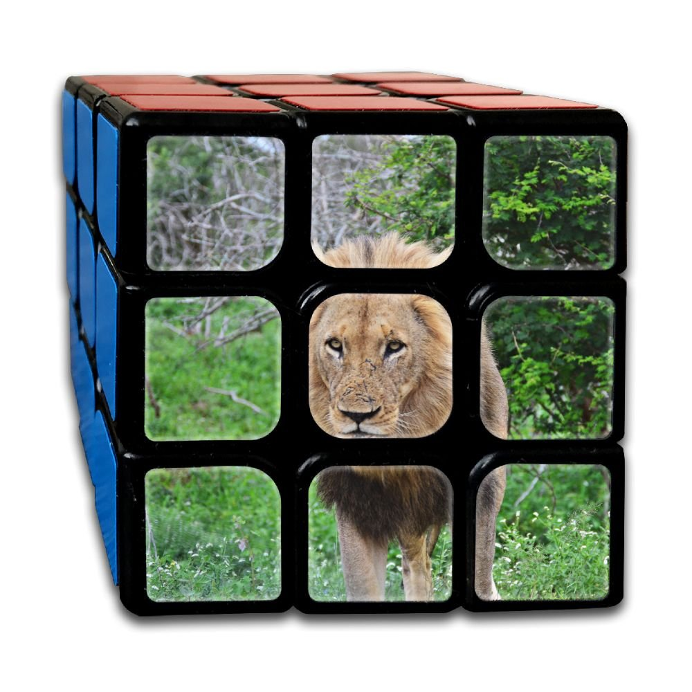 AVABAODAN Marziale Lion Rubik's Cube Original 3x3x3 Magic Square Puzzles Game Portable Toys-Anti Stress For Anti-anxiety Adults Kids
