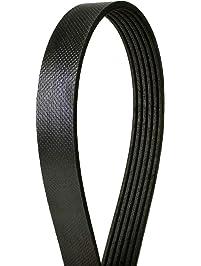 Continental Elite 4060785 Poly-V/Serpentine Belt