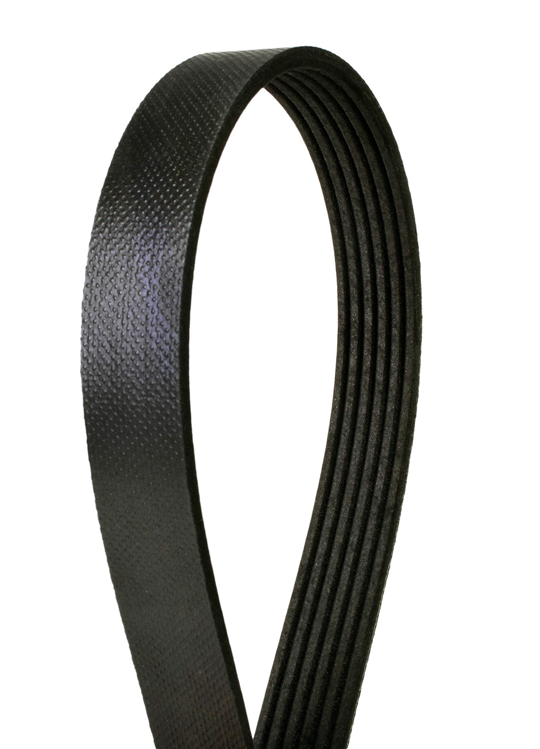 Serpentine Belt CRP PK060407