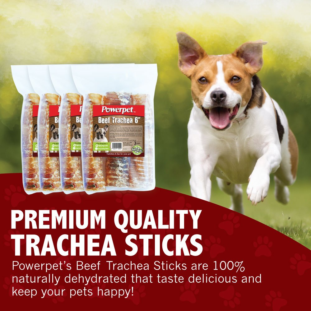 Powerpet: Beef Trachea 6in - Natural Dog Chew - Helps Improve Dental Hygiene - 100% Natural & Highly Digestible - Protein with Low Fat - Beef Jerky Dog Treat - Made from Beef Esophagus by Powerpet (Image #3)