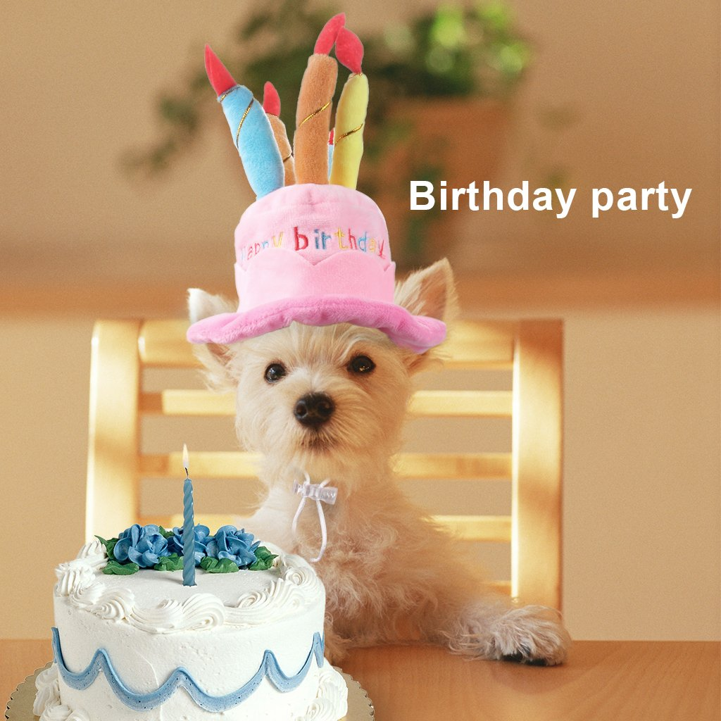 Owude Pet Birthday Hat Cute Dog Birthday Hat With Cake Candles