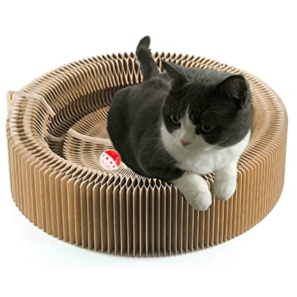 Amazon.com : BUDPAW Cat Scratcher Cardboard Scratching Post Pad Scratch Lounge Bed Large Turbo Ball Toy with Catnip Protect Furniture and Keep Kitty Health ...