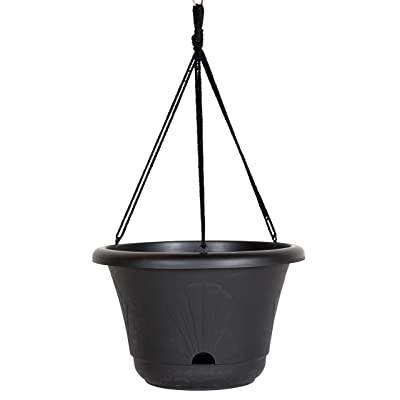 "Bloem 010237, Black Lucca Self Watering Hanging Basket, 13"": Garden & Outdoor"