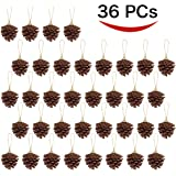Joiedomi 36 Hanging Real Pine Cones Ornaments for Christmas and Holiday Decorations by