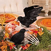 Fun Express Realistic Feathered Crows -Set of 2 - Great Halloween Prop Unknown