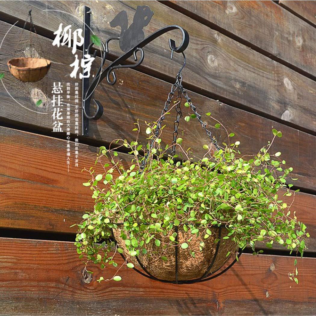Schwarz CozofLuv 5 St/ück Blumenampel Halterung Blumenampelhaken Wandhalterung f/ür Blumentopf Blumenampel Windspiele Wandhaken f/ür Hanging Baskets mit Schrauben D/übeln