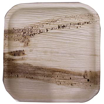 Plato cuadrado biodegradable de calidad prémium (25 piezas, 25,4 cm),