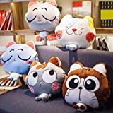 NAS AOSTAR Pillow Blanket Plush Cat Stuffed
