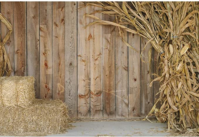 OFILA Rustic Barn Backdrop 14x10ft Country Farm Photos Background Rural Landscape Shoots Kids Rustic Birthday Party Decoration Country Events Video Studio Props