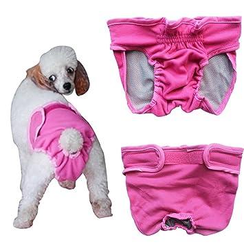 Septven - Bragas sanitarias para mascotas (lavables, pañales, higiene, para