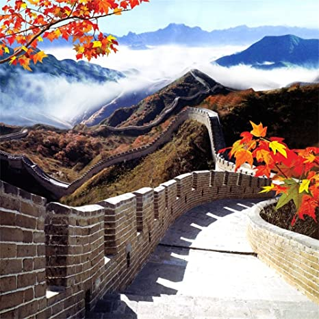 Amazoncom Aofoto 8x8ft The Great Wall Backdrop Ancient Chinese