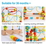 Timy First Bead Maze Roller Coaster Wooden