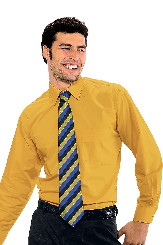 Isacco Cravatta classica