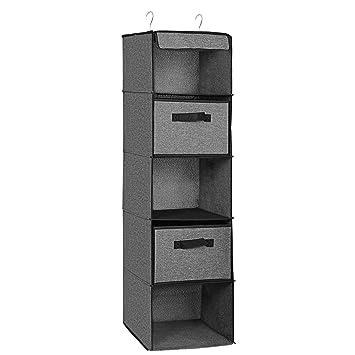 Amazon.com: SONGMICS URCHD06 Organizador de armario colgante ...