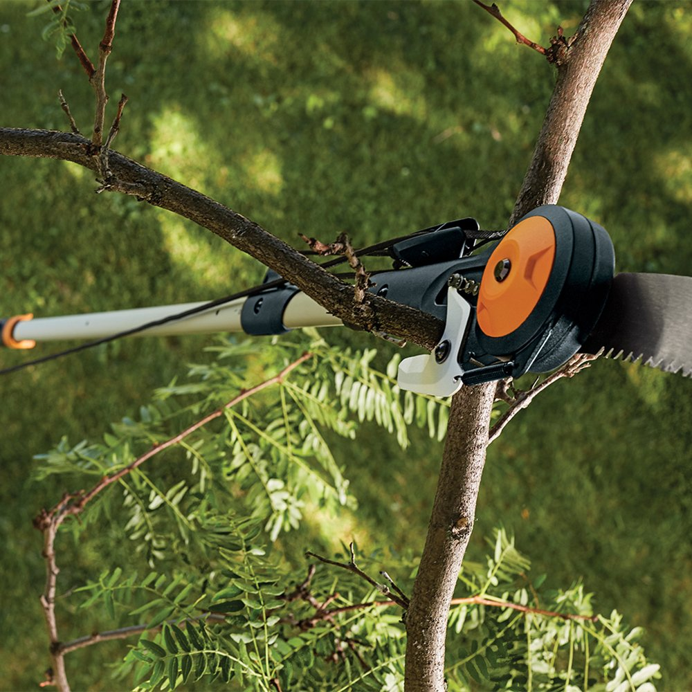How To Choose The Best Manual Pole Saw