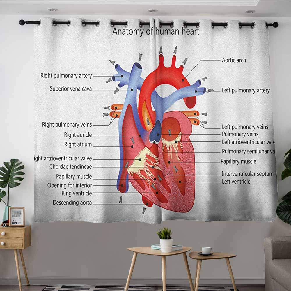 Sliding Door Curtains,Educational Medical Structure of The Hearts Human Body Anatomy Organ Veins Cardiology,Treatment Thermal Insulated Room Darkening,W55x63L Coral Red Blue