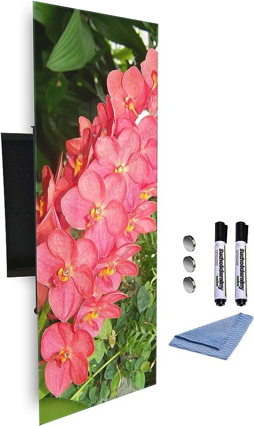 GlassArtist 660672910 - Caja para Llaves (80 x 30 cm, Frontal de ...