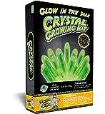 Glow in the Dark Crystal Growing Science Kit