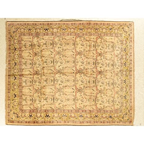 Amazon Com Agra Area Rug Floral Beige Oriental Rug For Living Room