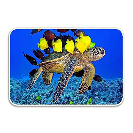 Amazon Com Ocean Underwater Turtle And Yellow Fishes Novelty