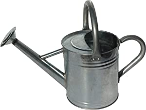 Gardener's Select AW3005PG Watering Can, Galvanized, 7 L