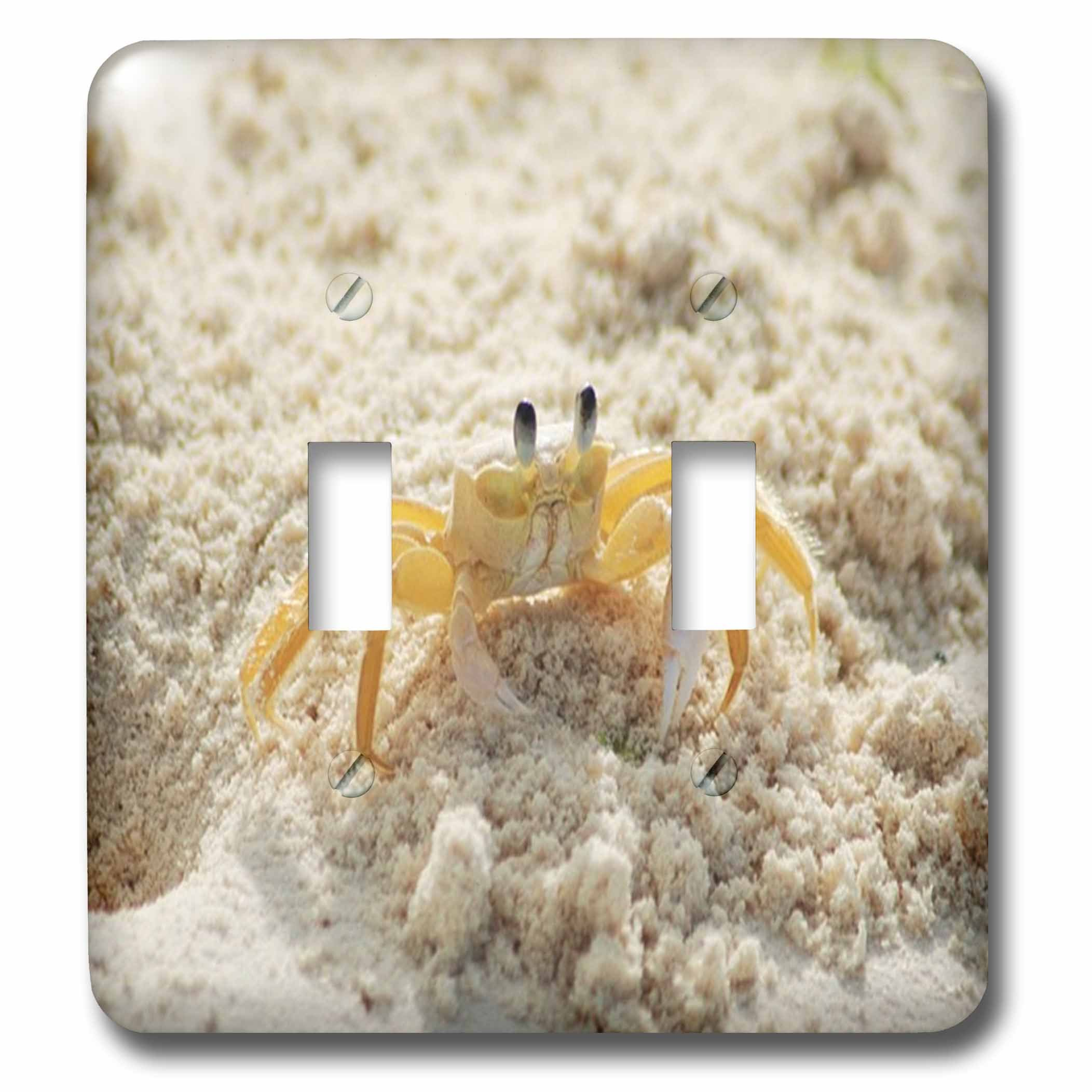 3dRose lsp_205035_2 Print of Baby Crab on Beach Sand Double Toggle Switch